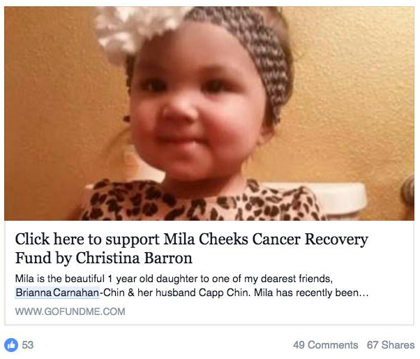 Mila Cheeks Cancer Recovery Fund