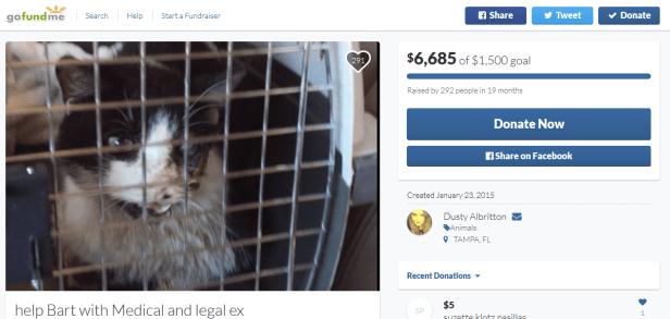 Bart Zombie Cat Gofundme