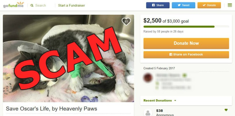 scam warning crooks are spoofing gofundme campaigns and charity