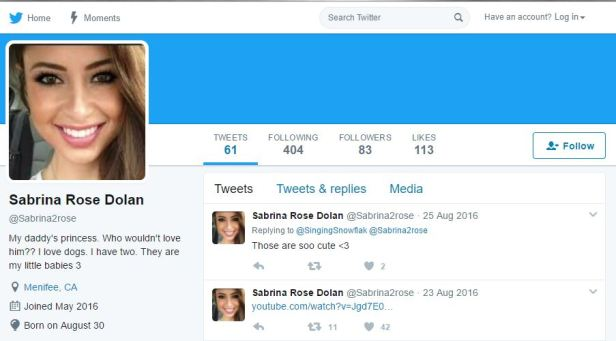 Fake Twitter pretty girl