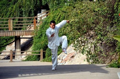 中国の歴史や武術から中国語を始める人も