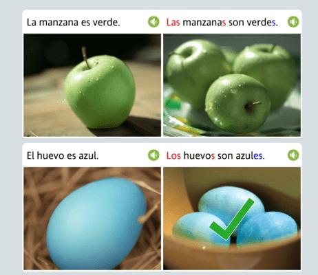 スペイン語文法