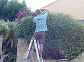 Mantenimiento Jardín
