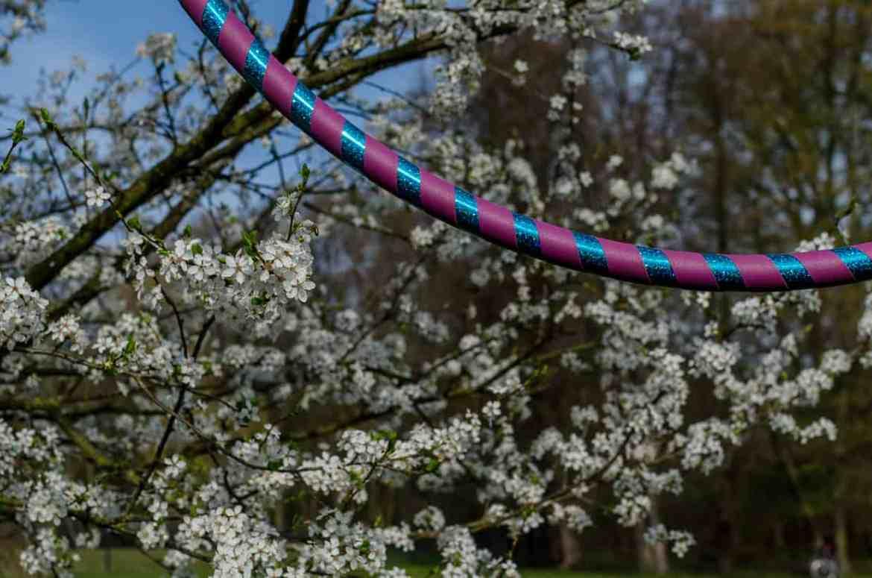Hula-Hoop-Reifen im Baum