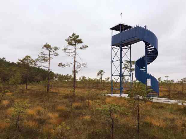 gogirlrun_estland_outdoor_moorschuhwanderung_soomaa-nationalpark_13