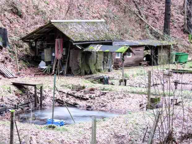 gogirlrun-wandern-saechsische-schweiz37