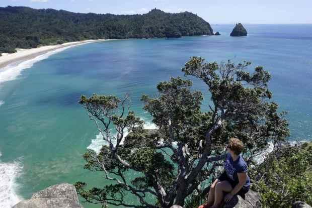 rundreise-neuseeland-coromandel-new-chums-beach-aussicht-2