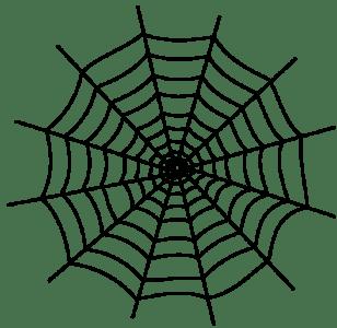蜘蛛の巣でお困りの方必見!煩わしい蜘蛛の巣の除去法を教えます!