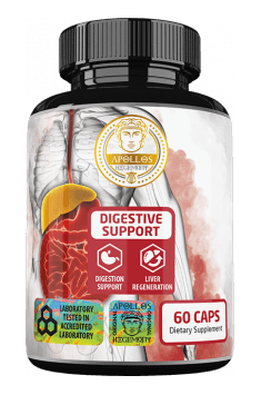 Digestive Support from Apollos Hegemony is the highest quality supplement, containing an complex of papain and synergistic substances, which highly improve digestive processes