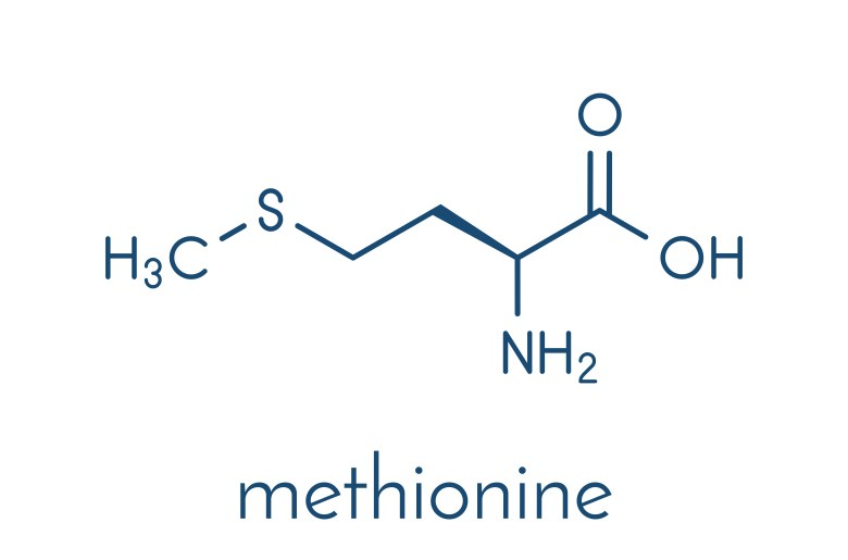Methionine - chemical formula