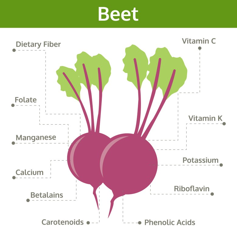 What we can find in beet?