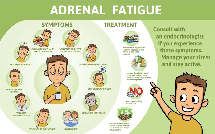 Adrenal fatigue can also be the cause of the lack of the sex drive
