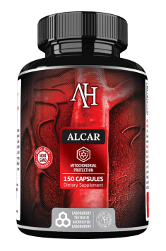 Recommended carnitine in an optimal form of Acetyl-L-Carnitine - Apollo's Hegemony Alcar