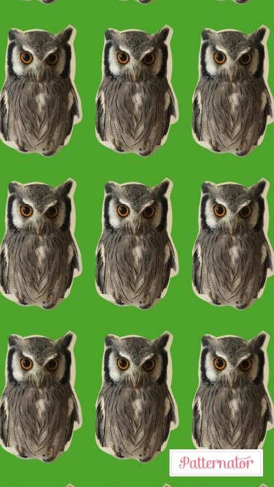 ペット画像を元にパターンメーカーで作成した壁紙2