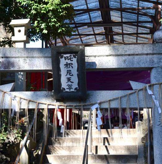 Shuse Inari Torii