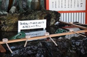 Frogs in the temizuya