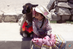Peruvian girl with her young Llama