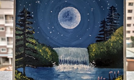 Moonlight Waterfall – @manishika_dhar