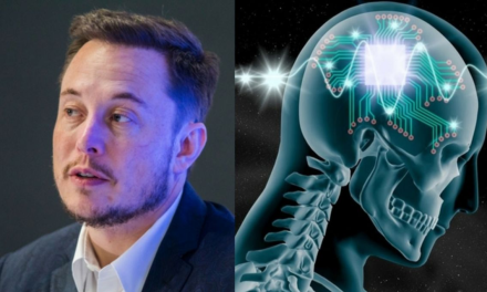 Elon Musk Unveils Neuralink's Latest Progress on Brain-Machine Interface