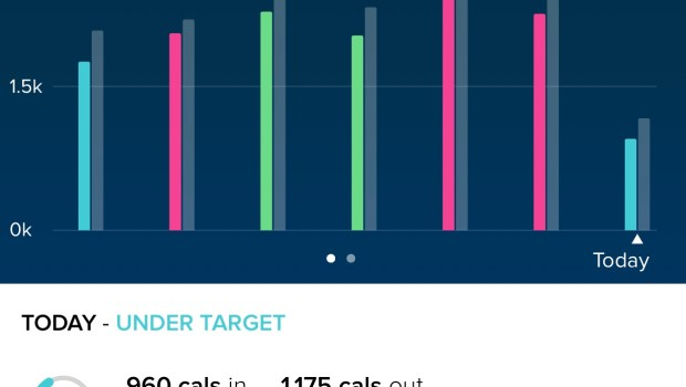 Fitbit App Caloric Intake and Exertion Graph