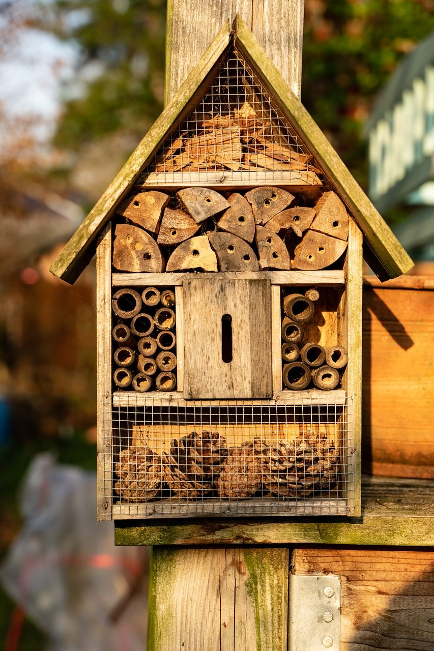 hostel para insectos en la ciudad del blog go green madrid para la green guerillas