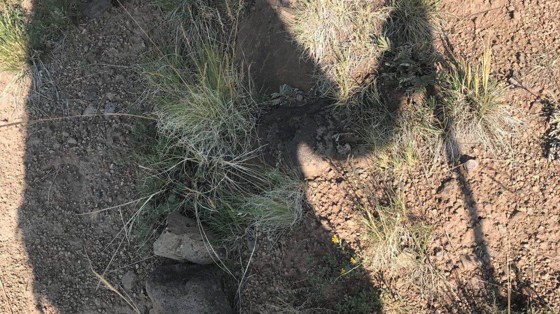 2018 GoHawkeye San Juan Trail Hike Journal