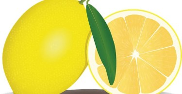 How Much Juice is in a Lemon?