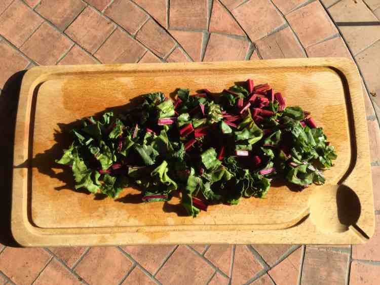 Beetroot stalks and leaves on a chopping board