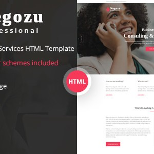 NEGOZU – BUSINESS AND CONSULTING SERVICES HTML TEMPLATE