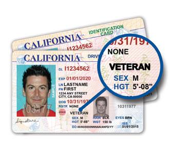 ca_vet_license_small
