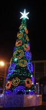 Semyonovskaya park tree