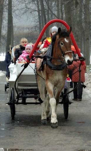 Carriage rides at Archangelskoye