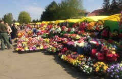 Flower Market at the Cemetery