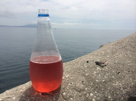 """Draft rosé """"pre-wine"""" - obviously I bought by the bottle."""