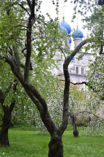 Kolomenskoye Orchard and Kazan Icon Church