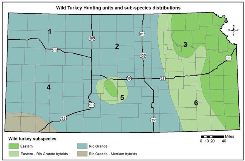 Kansas Deer Hunting Public Land