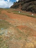 Yongai Airstrip - Cleaned up by the RAA
