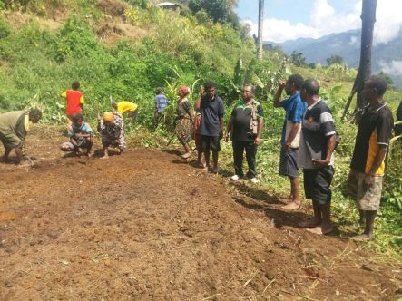 Hon William Samb with the locals clearing the demonstration plot for potato seeds to be planted