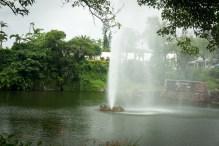 Southeast BotanicalG-19