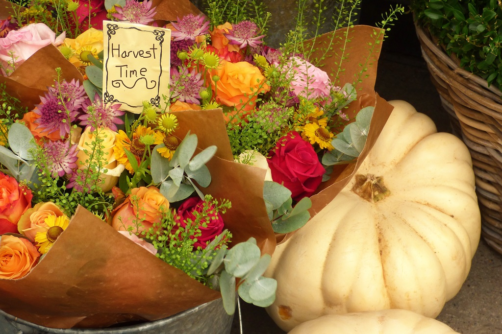 Pumpinks and flowers in an autumnal display