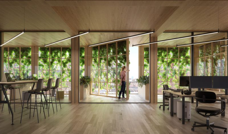 Elementos verdes presentes no escritório ajudam a melhorar qualidade de vida dos profissionais