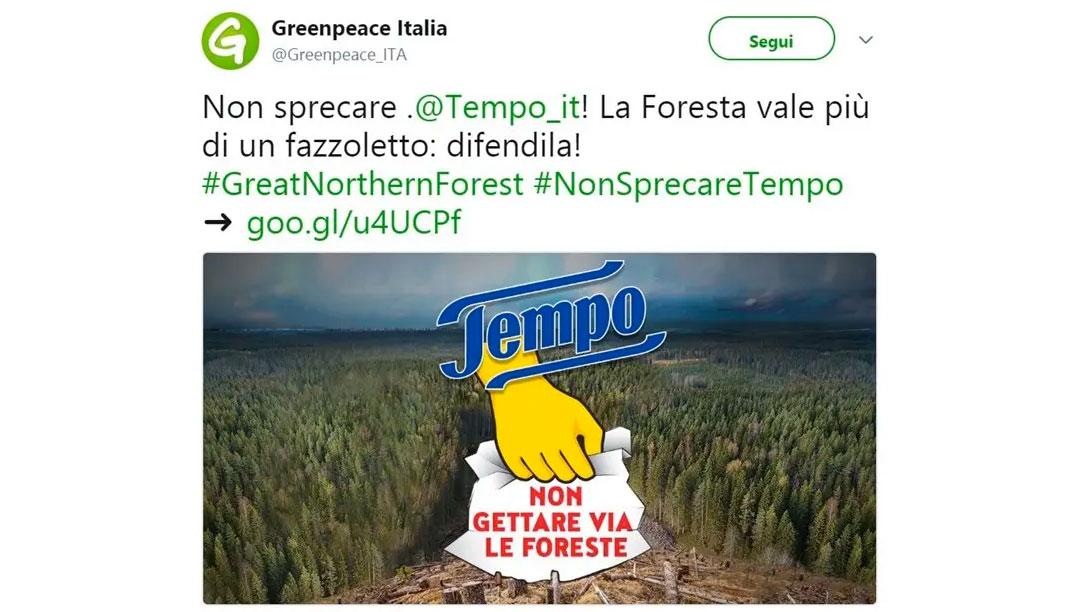 distruzione foreste fazzoletti