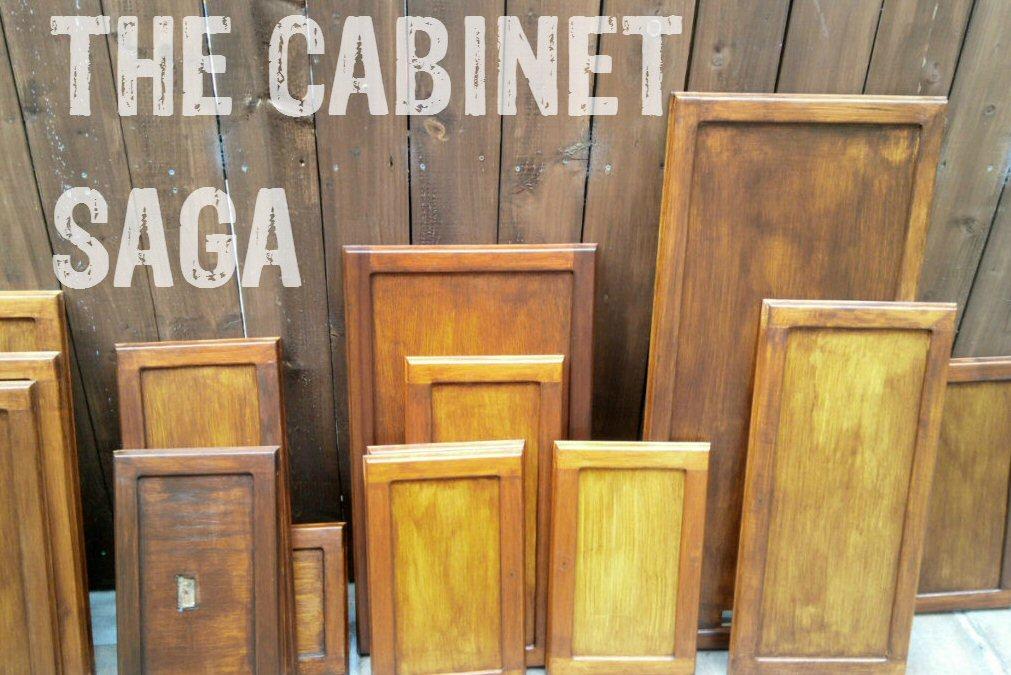 cabinet saga