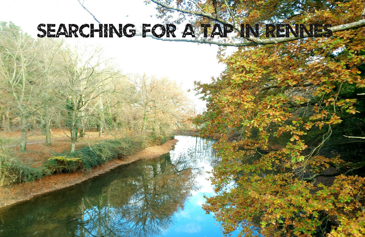 Searching For A Tap In Rennes – Grey Water Leak
