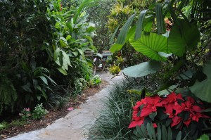 Meandering paths take you through lush gardens at Crane's Beachhouse © 2015 Karen Rubin/news-photos-features.com