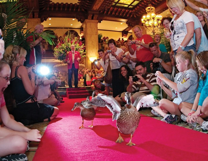 The famous duck walk at The Peabody Memphis. Doug Browne of The Peabody Memphis (1869) Memphis, Tennessee was honored as the 2016 Historic Hotelier of the Year.