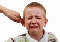 pengertian telinga