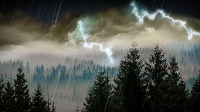 Mengatur suatu siklus hujan
