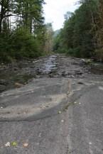 Road bed, meet river bed