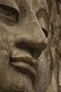 buddha-1157996__180